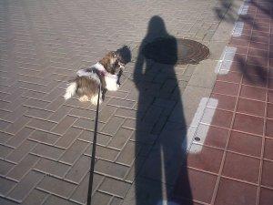 Lluneta, alma de La guía del mayor. Qué felíz nos hace pasear con ella.